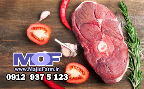 فروشگاه گوشت شترمرغ در تهران