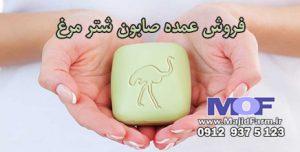 فروش عمده صابون شتر مرغ