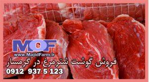 فروش گوشت شترمرغ در گرمسار