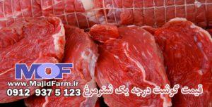 قیمت گوشت درجه یک شترمرغ