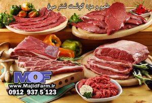 مرغوب ترین قسمت گوشت شترمرغ