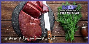 فروش گوشت شتر مرغ در نیروهوایی