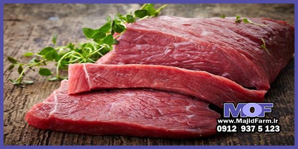 فروش عمده گوشت شترمرغ تازه