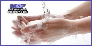 فروش صابون شتر مرغ طیبیعی