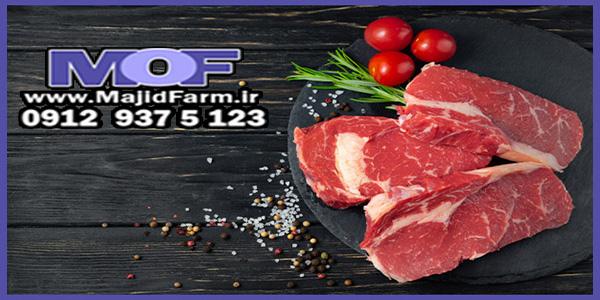 فروش اینترنتی گوشت شترمرغ تازه
