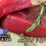پخش عمده گوشت شتر مرغ در تهران