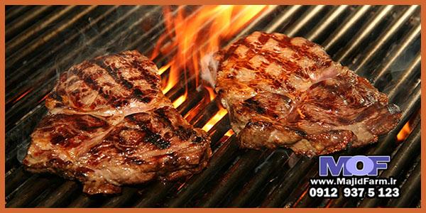 قیمت خرید گوشت شترمرغ شمال تهران
