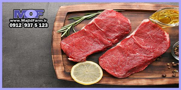 فروش گوشت شترمرغ برای رستوران ها