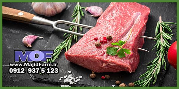 فروش انلاین گوشت شترمرغ