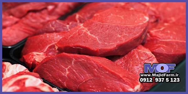 از کجا گوشت شترمرغ خوب بخرم