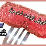 قیمت خرید گوشت شترمرغ سعادت آباد