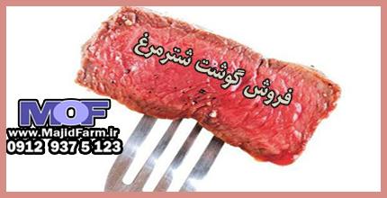 قیمت خرید گوشت شترمرغ مرکز تهران